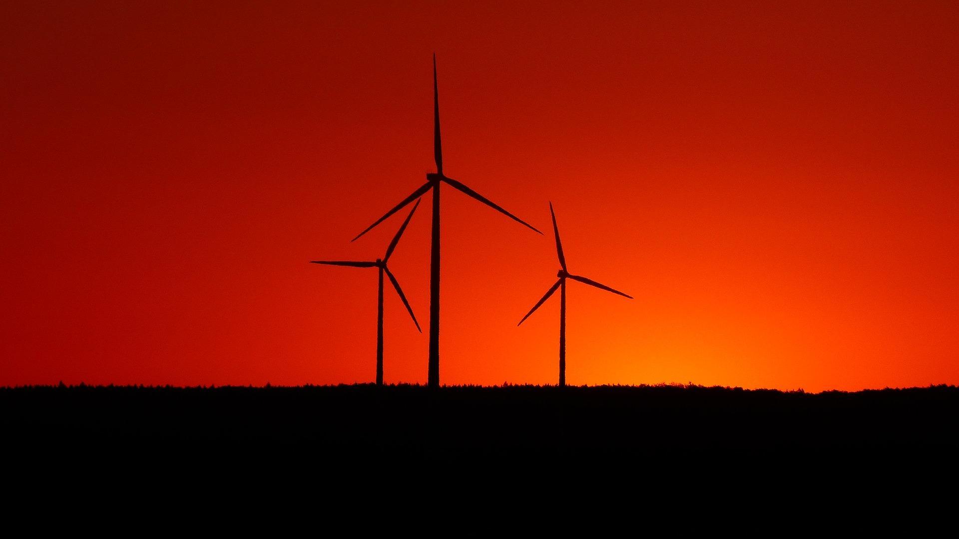Brennmaterial für die Biomasse-Heizungsanlage