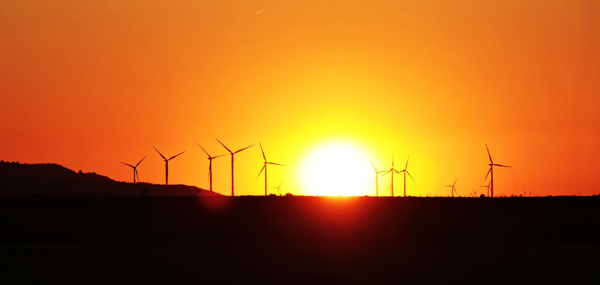 Das Windkraftrad und der Artenschutz