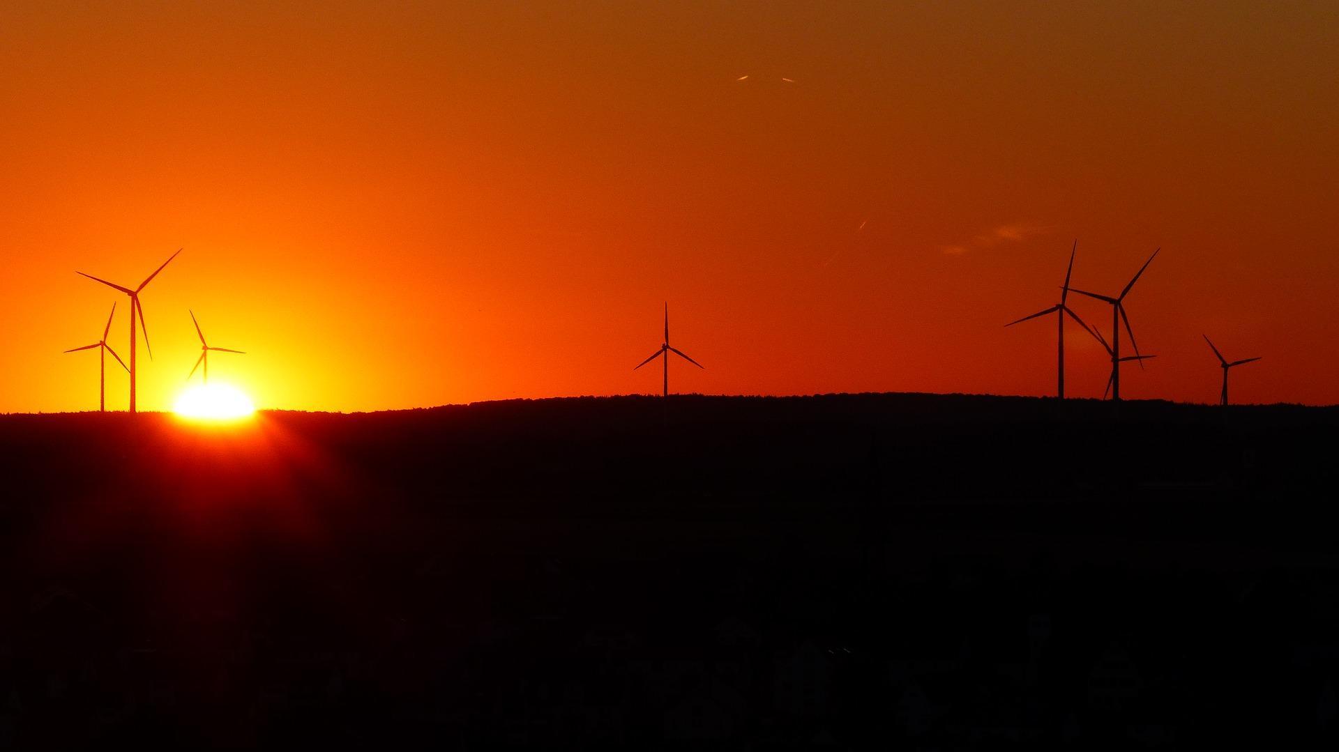 Die Windenergieanlage im Außenbereich und der Vogelschutz
