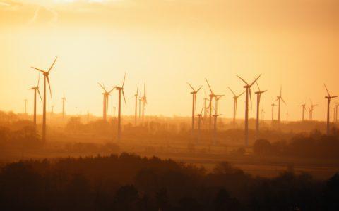 Feststellungsanträge im energiewirtschaftsrechtlichen Verwaltungsverfahren