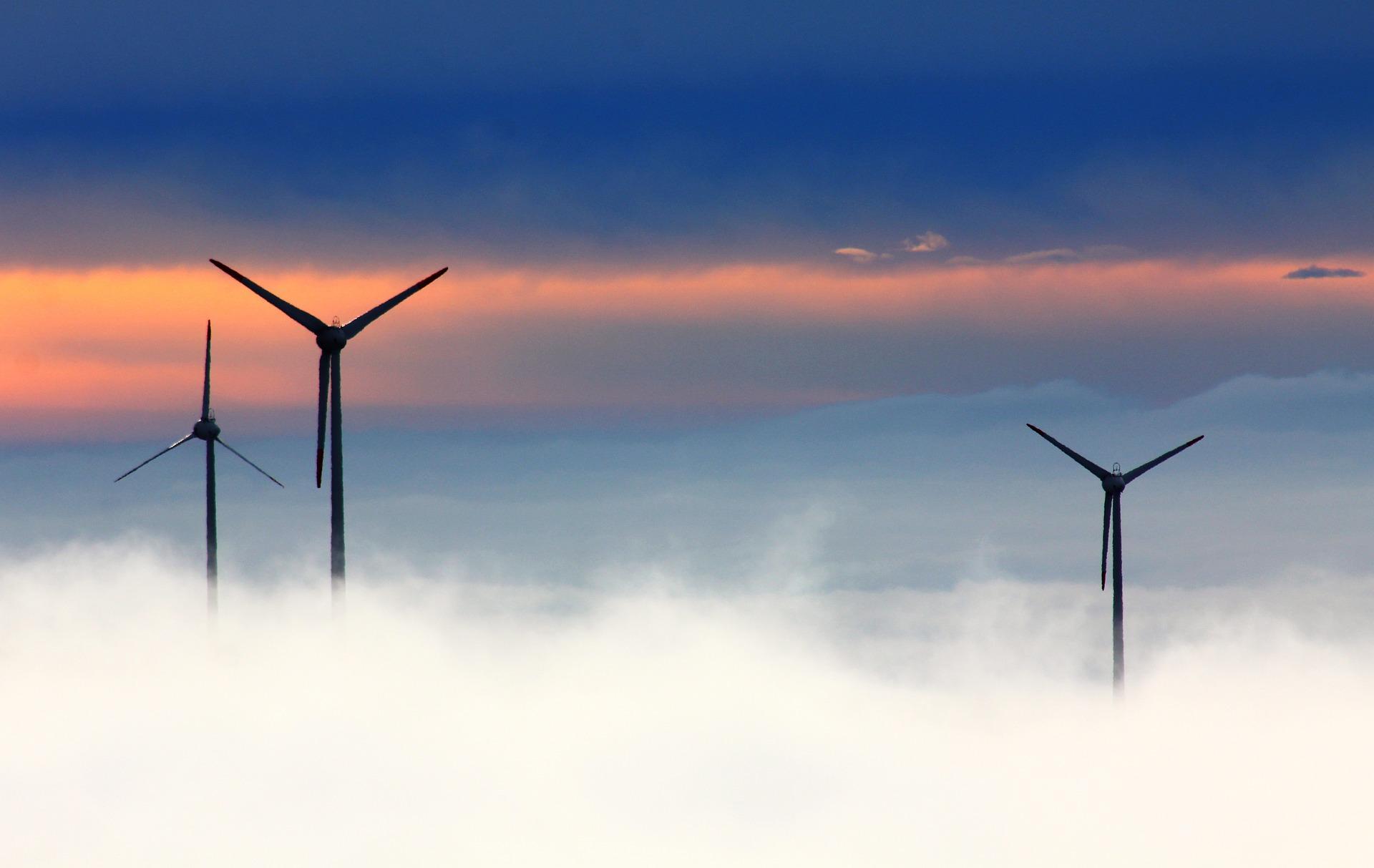 Rekordanteil beim Stromverbrauch der erneuerbaren Energien