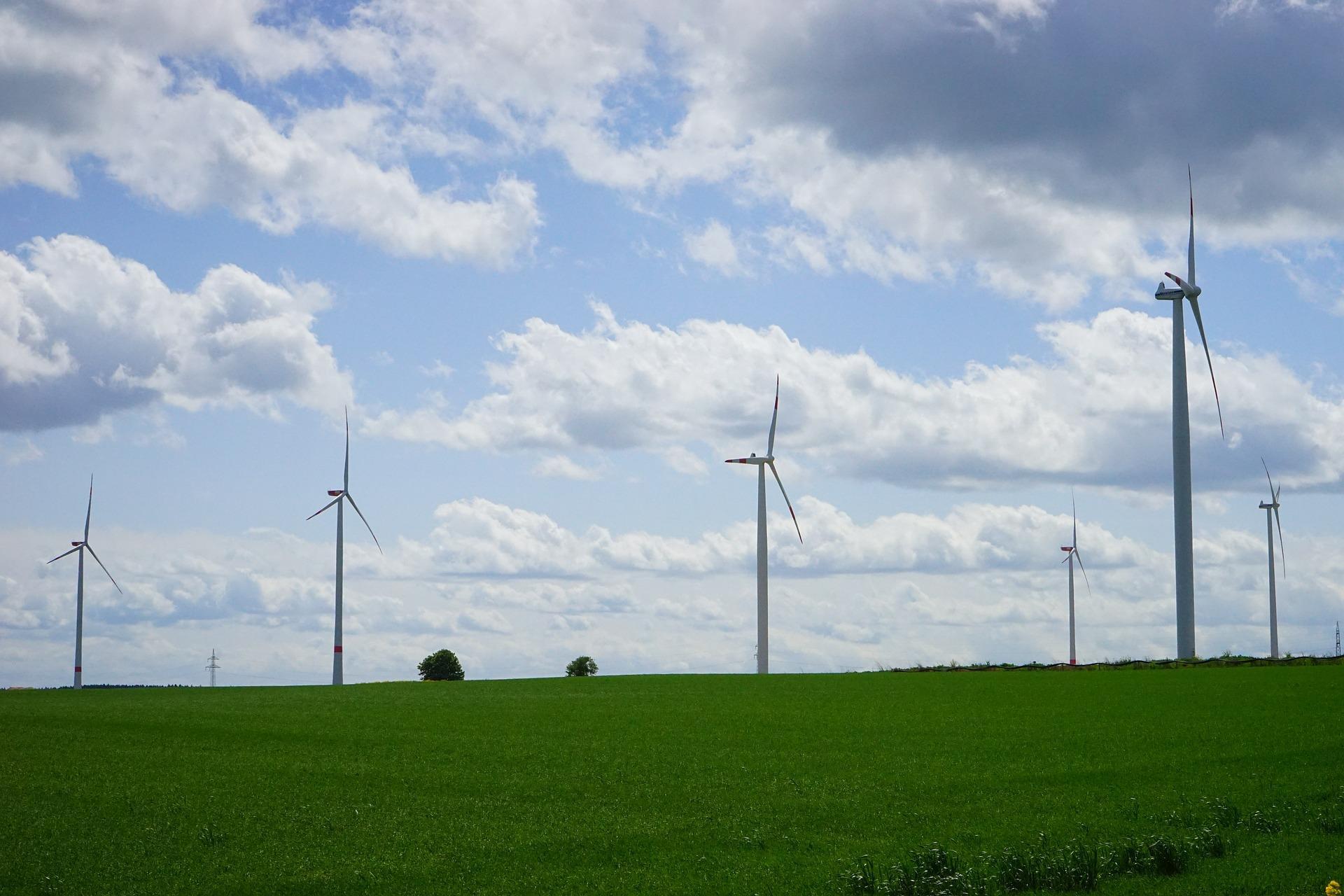 Abnahmeverpflichtung für Strom aus Windkraftanlagen