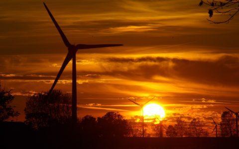 Windkrafträder auf ehemaligen BVVG-Ackerland